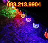 Bóng đèn led pin năng lượng