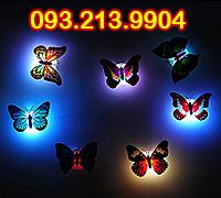 Đèn led hình bươm bướm đổi màu