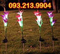Đèn hoa Lily sạc pin năng lượng